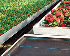 Cooling curtains in greenhouses